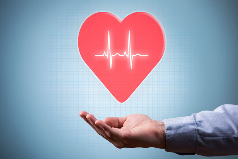 graphic of a red heart shaped object with heart beat lines going through it hovering over a mans hand