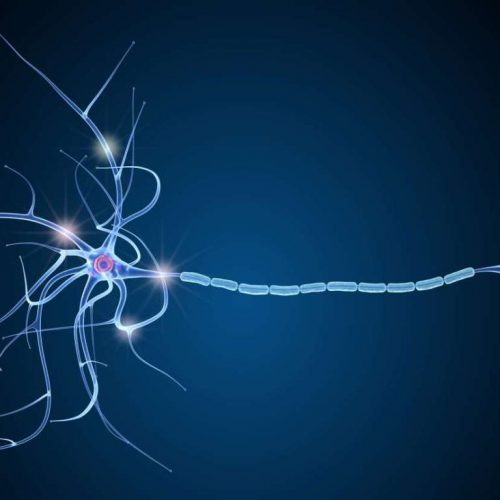 Dark blue background with bright blue myelin sheath and neurons