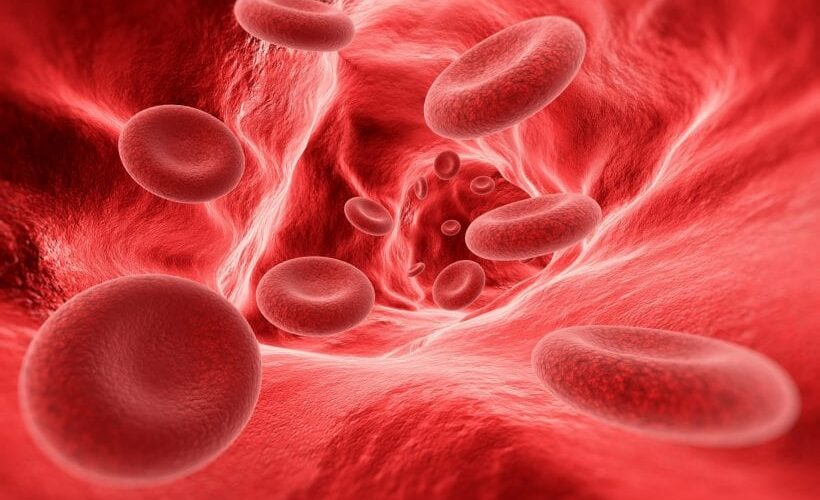 Graphic of red blood cells flowing through a vein freely